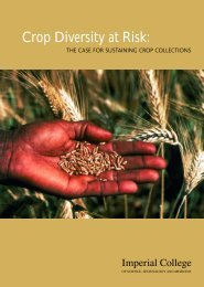 Crop Diversity at Risk: the case for sustaining crop collections