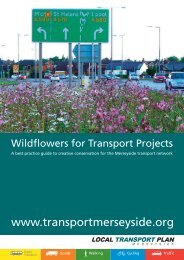 Wildflowers for Transport Projects - the TravelWise Merseyside ...