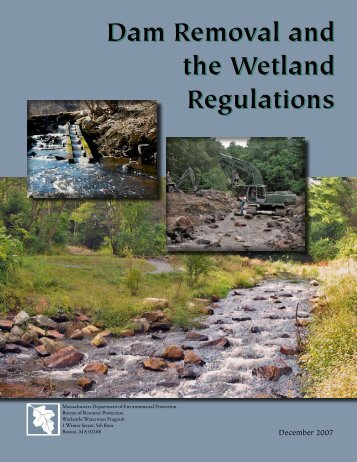 Dam Removal and the Wetland Regulations Dam ... - Mass.Gov