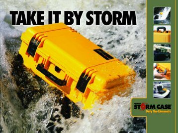 TakeItByStorm 2005 Catalog.pdf - MAE Group International, Inc.