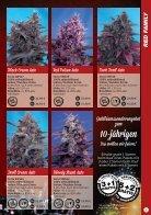 Sweet Seeds 2015 - Deutsch - Seite 5