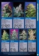 Sweet Seeds 2015 - Deutsch - Seite 7