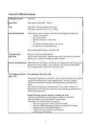 funktionsbeskrivelse og forventninger - Billund Kommune