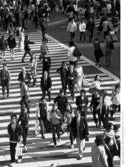 L'espac ement des pas sants, c arrefour de Shibuya, T okyo. Jan P