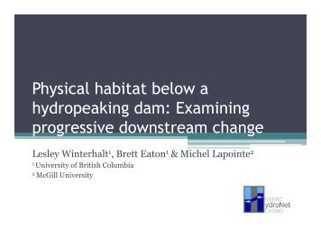 Physical habitat below a hydropeaking dam: Examining ... - HydroNet
