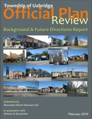 Background and Future Directions Report Feb 2010 - The Township ...