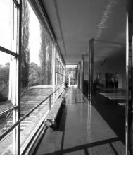 Materiality of the Diaphane. Comments on the ... - Bauhaus Online