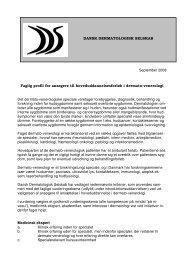 September 2008 Faglig profil for ansøgere til ...