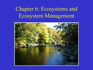 Chapter 6: Ecosystems and Ecosystem Management
