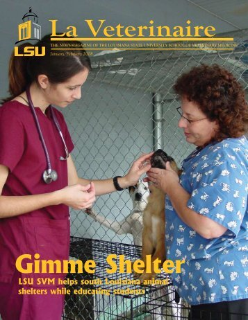 Gimme Shelter - School of Veterinary Medicine - Louisiana State ...