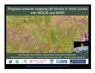 Progress towards mapping  tall shrubs in Arctic tundra with MODIS ...