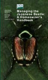 Plants Resistant to Japanese Beetle - Walter Reeves