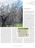 articolo - Archivio Rete Poli - Arsia - Page 4