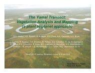 Vegetation Analysis and Mapping - Alaska Geobotany Center