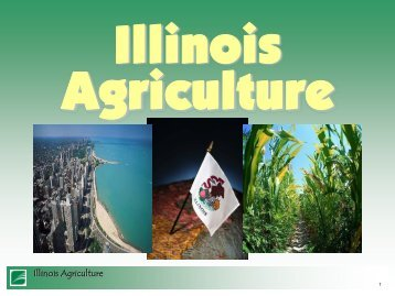 Local Food Systems Presentation January 2011 - Illinois ...