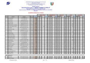 Torneo 3 livello GpT/GAF 2013 - Comitato Regionale Campania F.G.I.