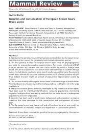 Genetics and conservation of European brown bears Ursus arctos
