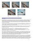 May - RASC Hamilton Centre - Page 4