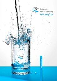 Geschäftsbericht 2012 - Zweckverband Bodensee-Wasserversorgung