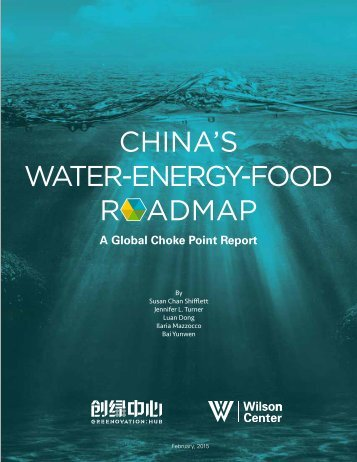 Water-energy-food Roadmap