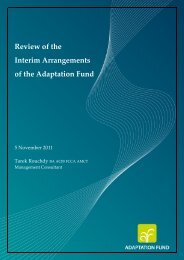 Review of the Interim Arrangements of the Adaptation Fund
