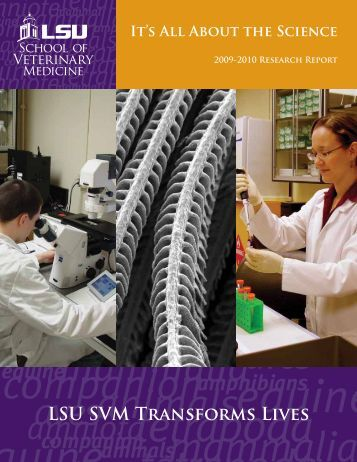 2009-2010 Research Report - School of Veterinary Medicine ...