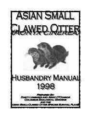 Asian Small-Clawed Otter Husbandry Manual (1998)