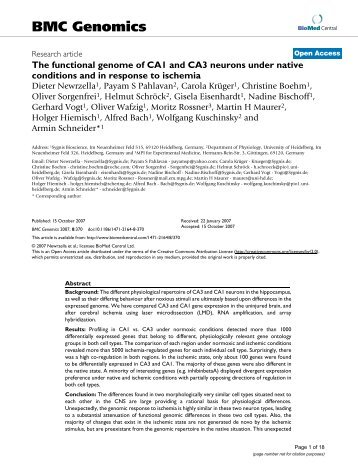 The functional genome of CA1 and CA3 neurons under native ...