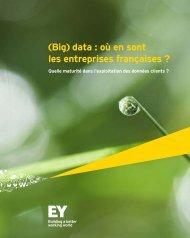 EY-etude-big-data-2014