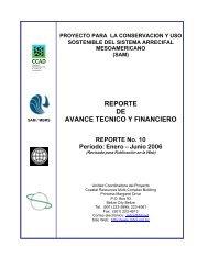 Reporte de Avance No. 10 Enero - Junio, 2006. - Mesoamerican ...