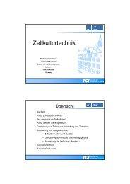 Kasper I Zellkulturtechnik LS 2010 - TCI @ Uni-Hannover.de