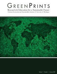 gesi_greenprints_sum.. - Graham Sustainability Institute - University ...