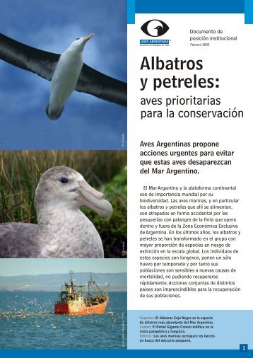 albatros y petreles - Aves Argentinas