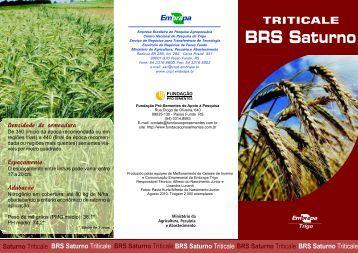 BRS Saturno - Embrapa Produtos e Mercado