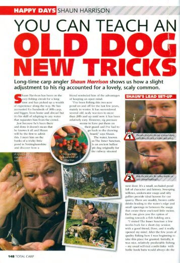 Old Dogs & New Tricks - Quest Baits