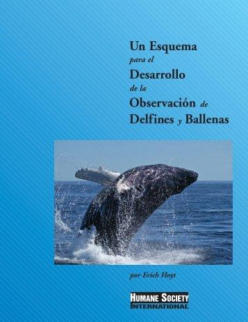 Un Esquema Desarrollo Observación de Delfines y Ballenas