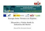 Energía Solar Térmica en España: Situación y Visión ... - Tech4CDM