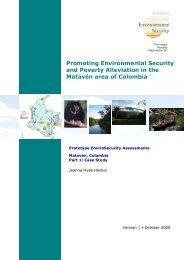 Promoting Environmental Security and Poverty Alleviation in the ...