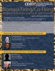Biomass Firing/Co-Firing - Ceati.com