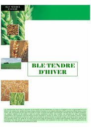 tableau comparatif blé tendre 2009 - Momont