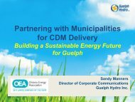 Partnering with Municipalities for CDM Delivery