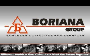 Business Consultancy Dept. - Boriana Group