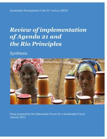 Review of implementation of Agenda 21 and the Rio Principles