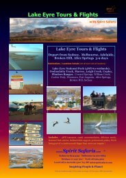 Lake Eyre Tours & Flights - Spirit Safaris