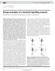 Design principles of a bacterial signalling network.