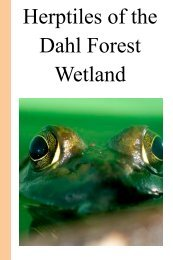 Herptiles of the Dahl Forest Wetland