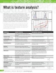 CT3 Texture Analyzer - Brookfield