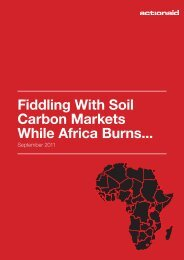 Fiddling With Soil Carbon Markets While Africa Burns... - ActionAid ...
