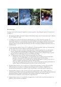 Reiselivsstrategi for Oppland - Oppland fylkeskommune - Page 5