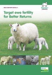 Manual 11 – Target ewe fertility for better returns - Eblex